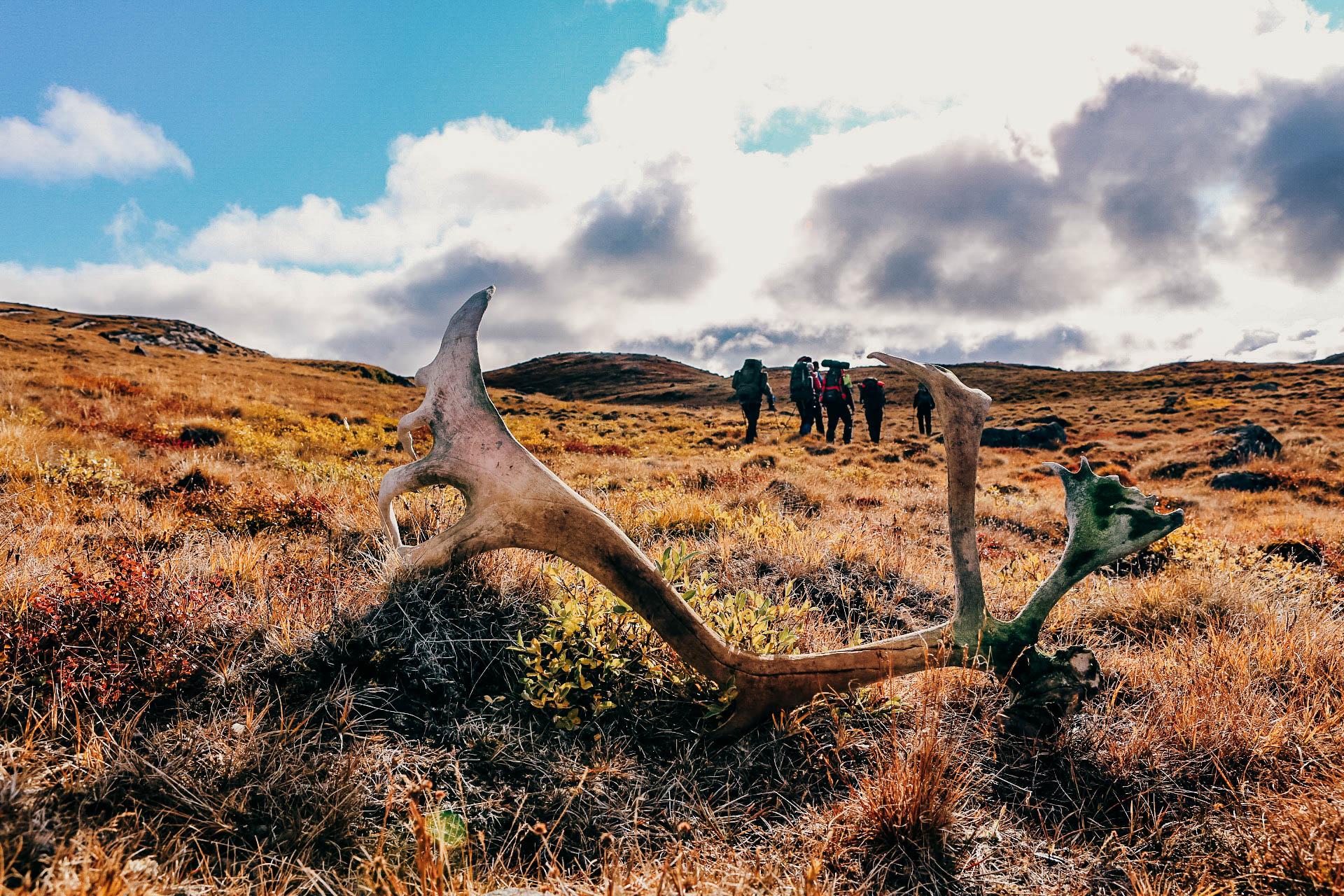 Groenland-Trekking-Hanwag-3357