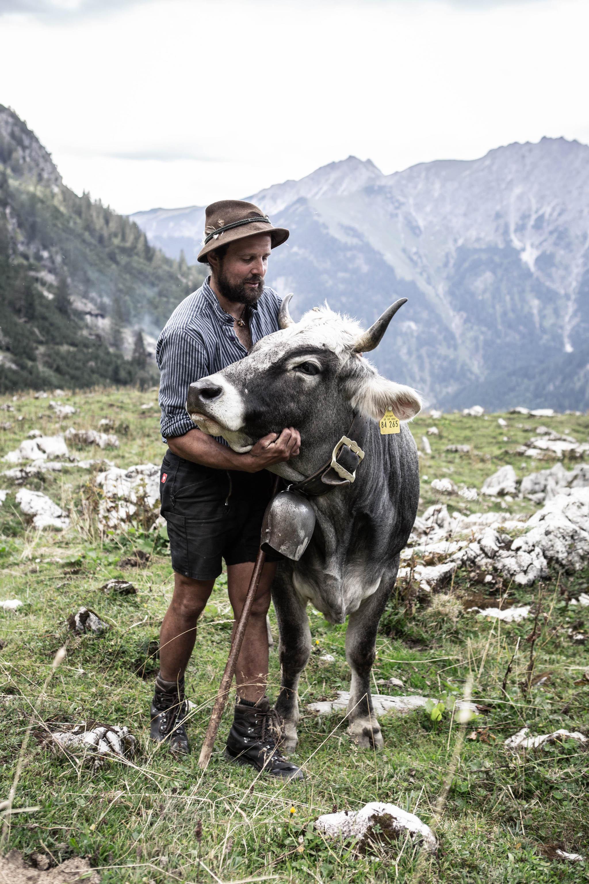 Mountain farmer Georg Rädler's cows