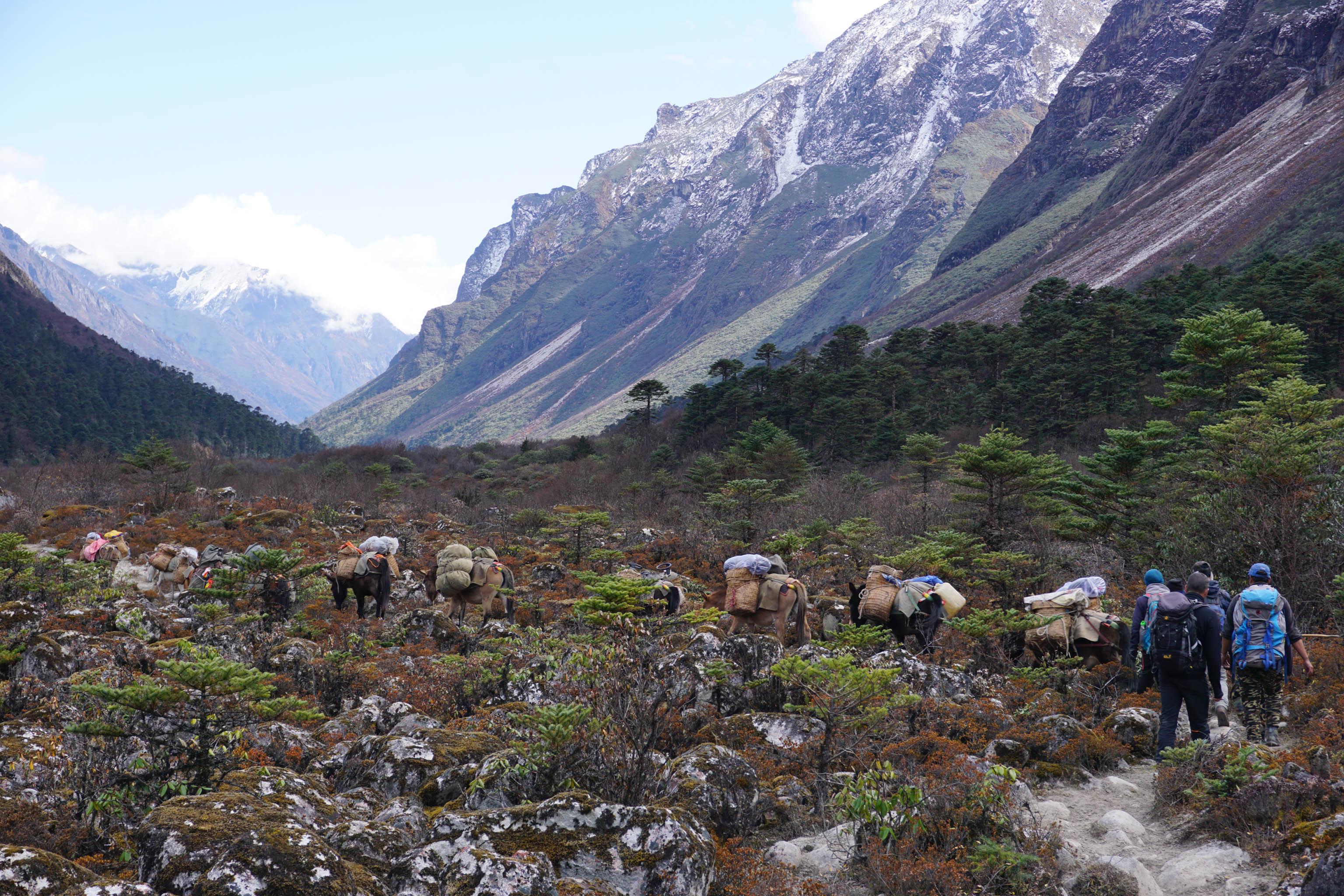 Bhutan Trekking Snowman Trek