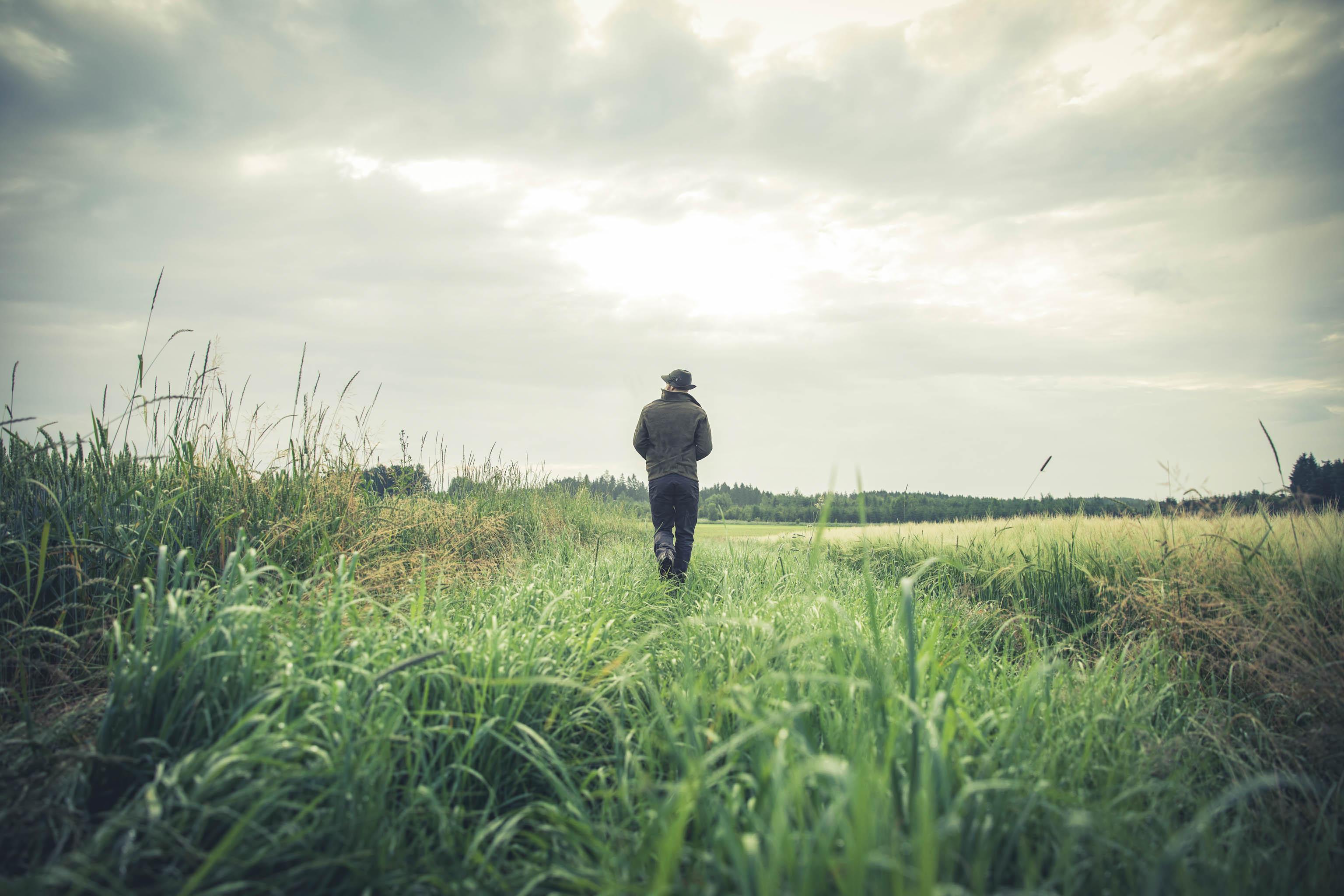 Wildlife photography stalking tips