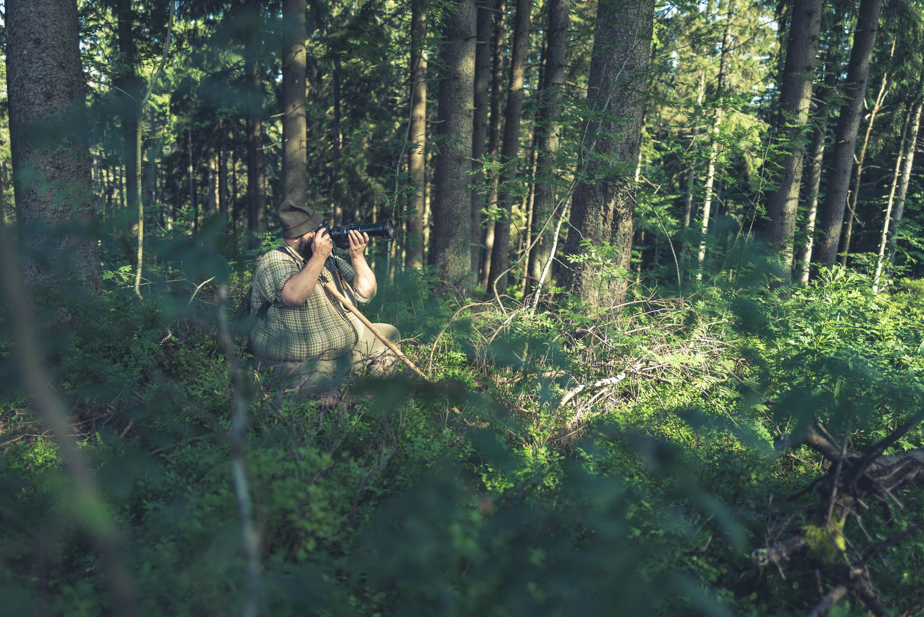 Wildlife spotting Wolfgang Schreil Bavarian Forest